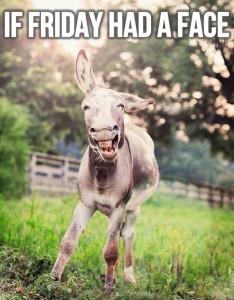 Friday Donkey