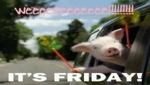 Friday pig