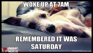 Saturday 7 a.m.