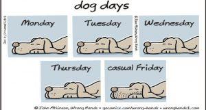 friday-dog-days